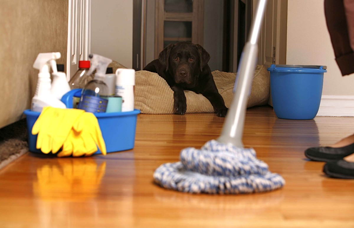 3 types of cleaning services